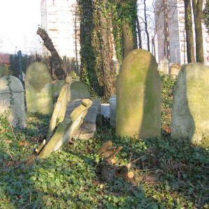 cieszyn-stary-cmentarz-zydowski-9