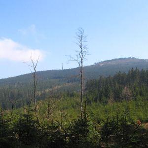 lesieniec-widok-na-czarna-gora