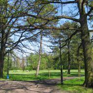 kluczbork-park