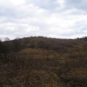borkowice-polana-lez