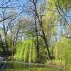 borow-palac-park