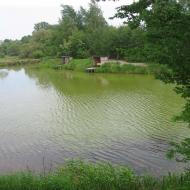 broszkowice-starorzecze-3