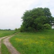 broszkowice-widok-2