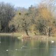 brzeg-park-wolnosci-2