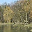 brzeg-park-wolnosci-4