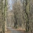 brzeg-park-wolnosci-7