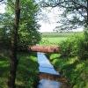 brzezce-kanal-branicki