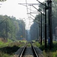 bukowina-sycowska-stacja-13