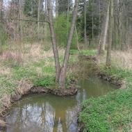 chwalimierz-potok-dojca