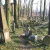 cieszyn-stary-cmentarz-zydowski-10