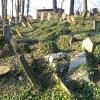 cieszyn-stary-cmentarz-zydowski-13