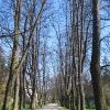 dlugopole-zdroj-park-zdrojowy-2