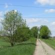 droga-338-kwiatkowice-10