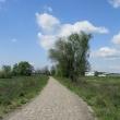 droga-338-kwiatkowice-15