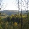 dwerniczek-widok-08