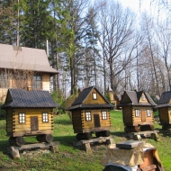 dziegielow-pszczele-miasteczko-6
