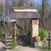 dziegielow-pszczele-miasteczko-1