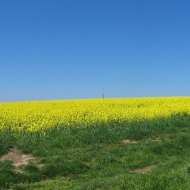 farna-gora-widok-1