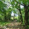 gora-holteia-pomnik-3