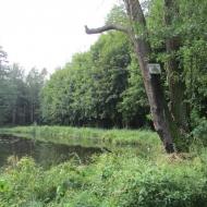 goszcz-park-02