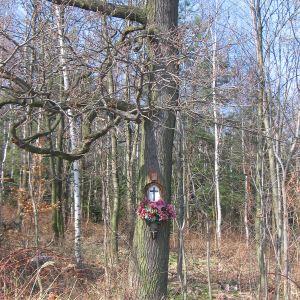 gozdnik-kapliczka