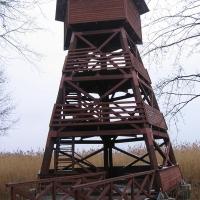 grabownica-wieza-widokowa-1.jpg