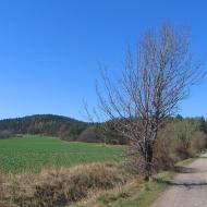 grochowiec-widok-na-szczyt-2