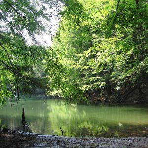 jeziorka-duszatynskie-jeziorko-dolne-5.jpg