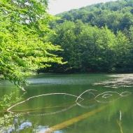 jeziorka-duszatynskie-jeziorko-gorne-1.jpg