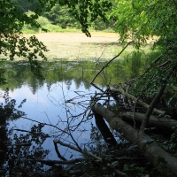 jeziorka-duszatynskie-jeziorko-gorne-5.jpg