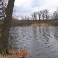 jezioro-dziewicze-1.jpg