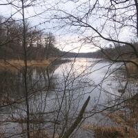 jezioro-dziewicze-5.jpg