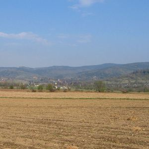 kierzna-widok-na-borowkowa