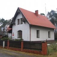 koruszka-lesnictwo.jpg