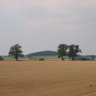 kostow-widok
