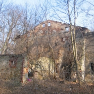 kotliszowice-dwor-ruiny-2