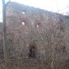 kotliszowice-dwor-ruiny-1