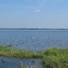 kotorz-wielki-jezioro-turawskie-05