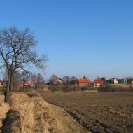 kozlow-widok-2