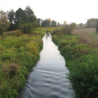 nowokrzepice-rzeka-liswarta.jpg