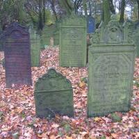 krzepice-cmentarz-zydowski-5.jpg