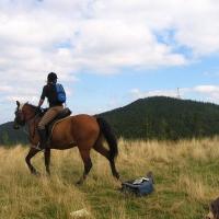 kucalowa-hala-konie-1.jpg