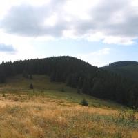 kucalowa-hala-widok-na-zlota-grapa.jpg