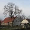 kuzniczysko-iii-5