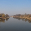 labedy-kanal-gliwicki