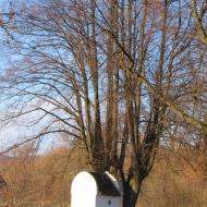 ladek-zdroj-ul-wiejska-kapliczka.jpg