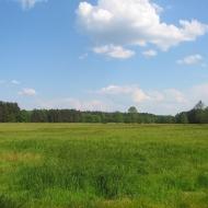 lasy-murckowskie-laki-nowe-widok-1