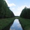 lasy-murckowskie-laki-nowe-mleczna-1