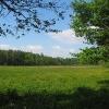 lasy-murckowskie-laki-nowe-widok-2