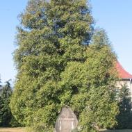 laryszow-kosciol-pomnik-poleglych